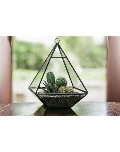 Plantpak Glass Pyramid Terrarium