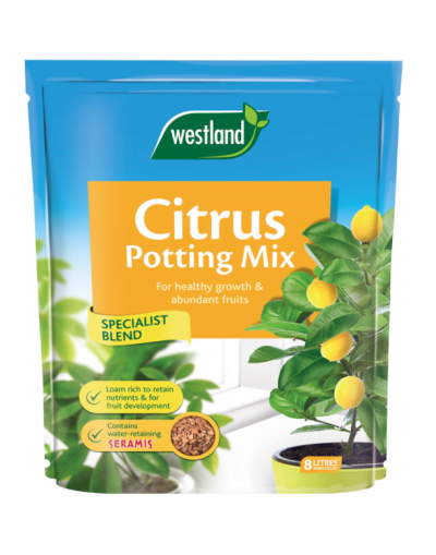 Westland Horticulture Citrus Potting Mix 8L