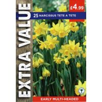 Taylors Bulbs Narcissus Tete A Tete Extra Value P/P (25)