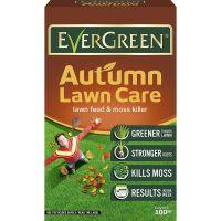 Evergreen Autumn 2 in 1 100sqm